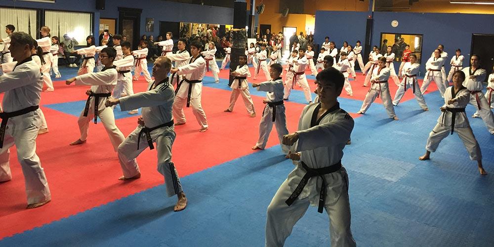 Adults Taekwondo Class